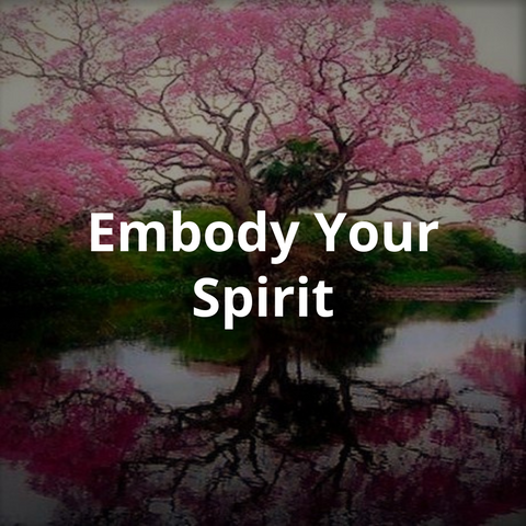 Embody Your Spirit Course. Spiritual Teacher. Spirit Guide. Energy healing. Chakra Healing. Soul Wisdom. Psychic. Mind Body Connection. Flower Essences. Space Clearing. Past Lives.
