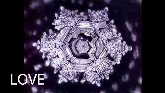 Dr. Masaru Emoto and Water Consciousness - Hidden Messages in Water