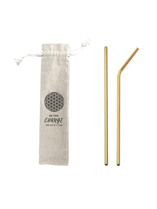 Eco-Straw Set - 2 Pack