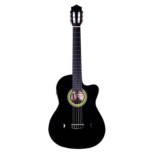 Palmer Classic Guitar Black with Pickup