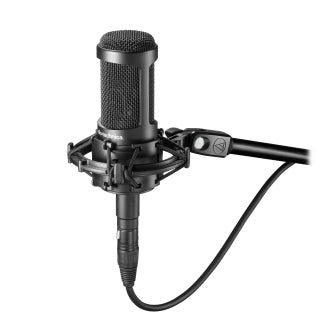 Audio Technica AT2050 Side-Addressed Multi-pattern Condenser Microphone