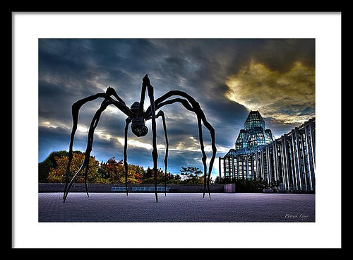 Spider Art - Framed Print