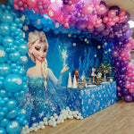 Frozen Premium Fabric Backdrop 13'x8'ft- For Rent