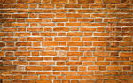 Red Brick Wall Premium Fabric Backdrop 13x 8ft  - For Rent