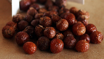 Soap Nuts FAQ