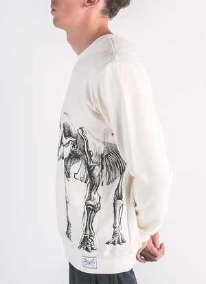 Ancient Revival screen printed mammoth skeleton print on hemp and bamboo sweater in natural color_ Side