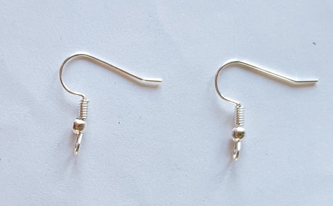 Silver Coloured Earring Hooks