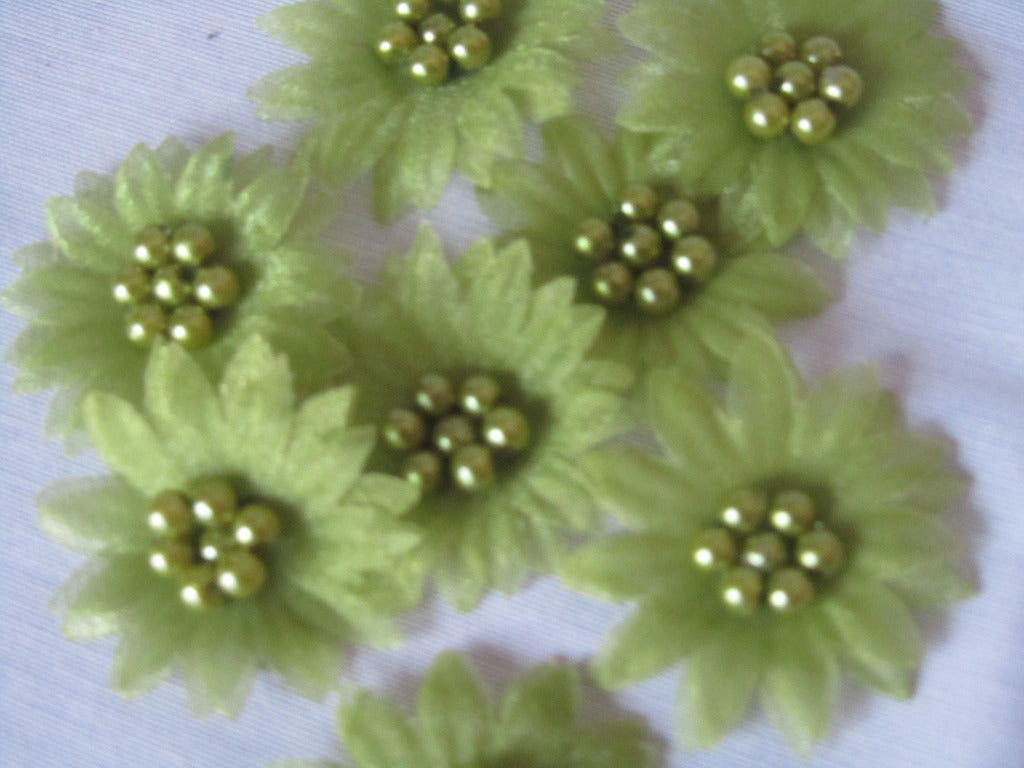 organza flowers with pearls, olive green