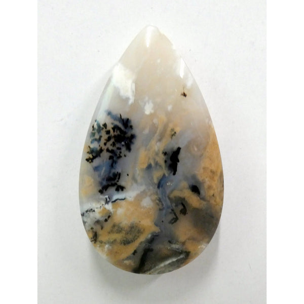 Tiger Dendritic Agate