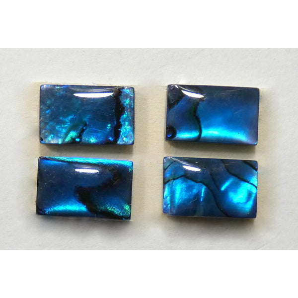 Paua Shell Matched Set
