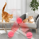 Funny Cat Toy kits-Free Shipping Worldwide