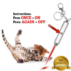 Interactive Bright Exercise Training Tool Fun Cat Toy