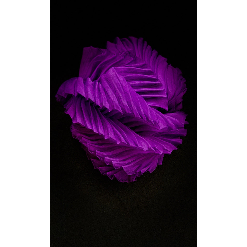 Mysterious Purple Twisted Object