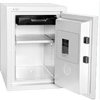 HOLLON 2 HOUR HOME SAFE HS-610E - Top Notch Safes