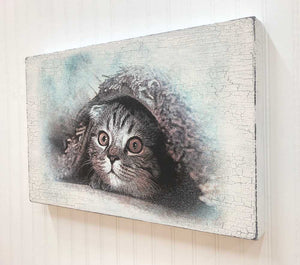 Cat Or Kitten Art Sign