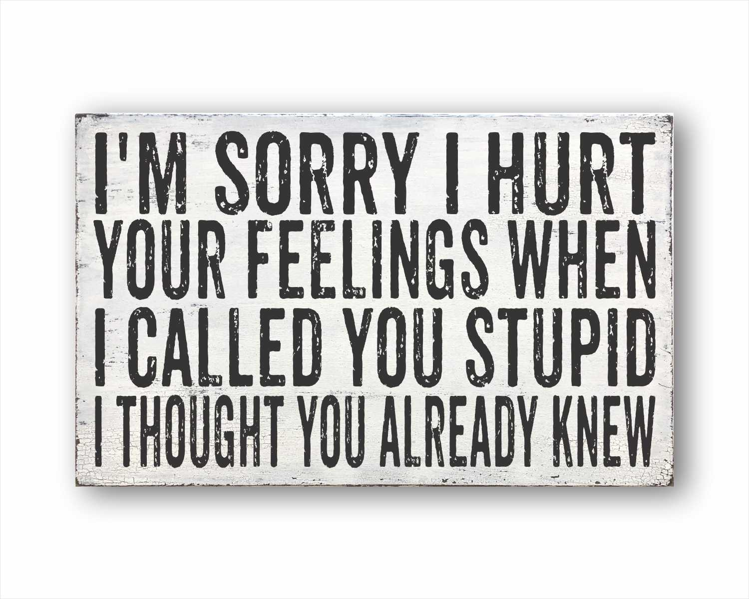 I'm Sorry I Hurt Your Feelings When I Called You Stupid I Thought You Already Knew: Rustic Rectangular Wood Sign