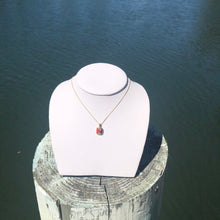 Load image into Gallery viewer, Mixed Mother of Pearl and Spiny Oyster Necklace