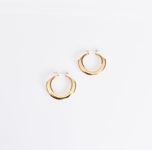 Load image into Gallery viewer, Heidi Metal Hoop Earrings