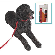 Load image into Gallery viewer, Reflective Pet Leash Set - Assorted Colors - KP Pet Supply