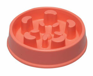 Slow Feeder Bowl - assorted Colors - KP Pet Supply