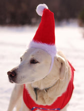 Load image into Gallery viewer, kp-pet-supply KP Pet Supply Adjustable Pet Santa Hat Holiday Costume Headband for Medium-Large Dogs KP Pet Supply Dog