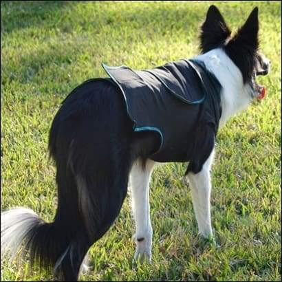 kp-pet-supply BeneFab Therapeutic Canine Comfort Shirt - Medium or Large Benefab Dog