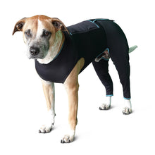 Load image into Gallery viewer, Benefab Canine Comfort Suit
