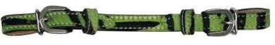 Hair On Cow Hide Zebra Print Curb Strap Lime Green - KP Pet Supply