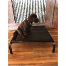 Load image into Gallery viewer, a small dog sitting on a wooden bench