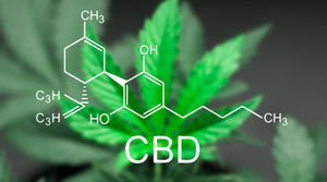 5 Top Benefits of CBD: Multiple Ways To Enhance Your Well-Being