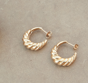 Nautilus Shell Hoops