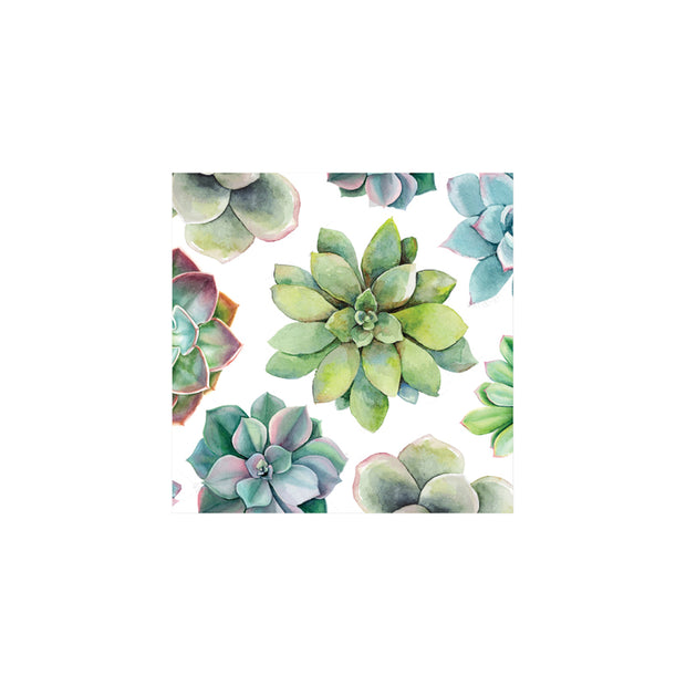 Succulent Cocktail Napkins - Set of 20