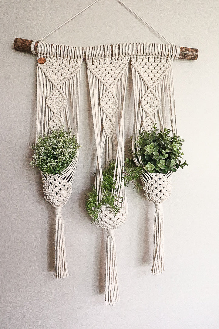 3 Plant hanger wall hanging