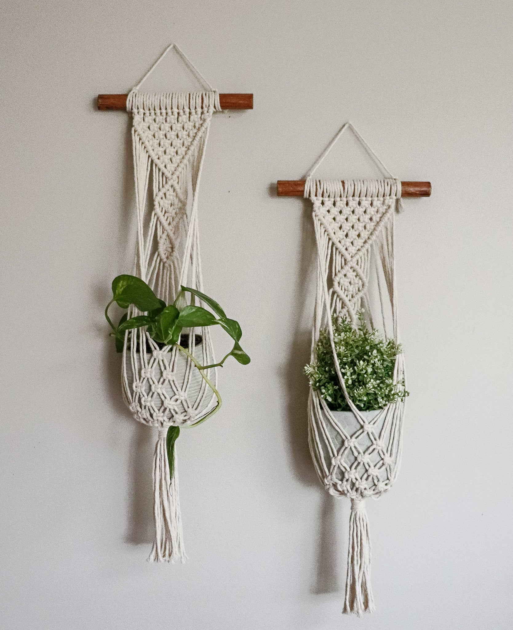 Plant Hanger Wall Hanging