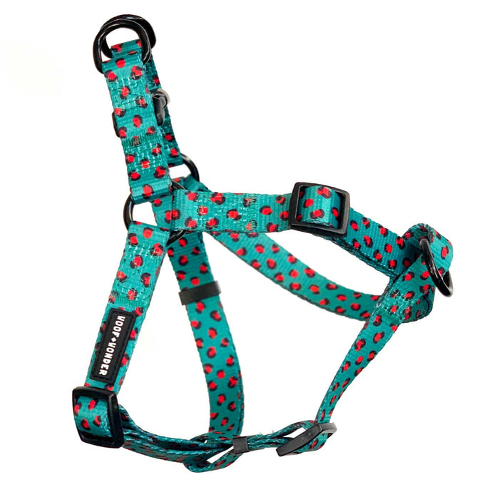 Into The Wild No Pull Step-In Harness - Harness