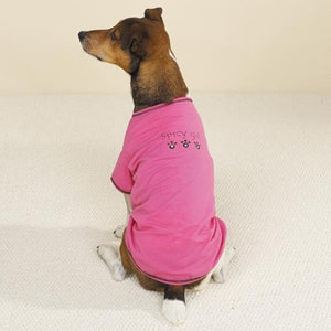 Pink Spicy Girl Dog T-Shirt by Casual Canine