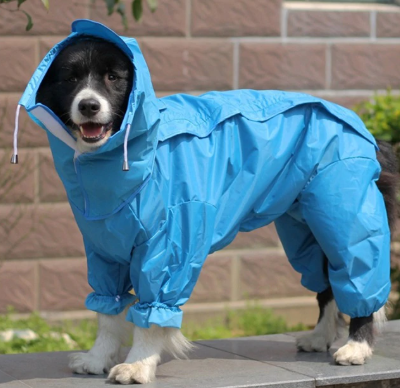 Trending Dealz PET Blue / 12 Dog Waterproof Raincoat