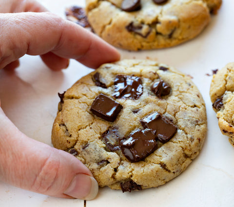 Warm Chocolate Chip Cookie