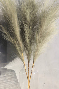 Large Olive Faux Pampas Grass - 3 Stem