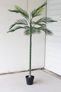 Palm Tree|Artificial