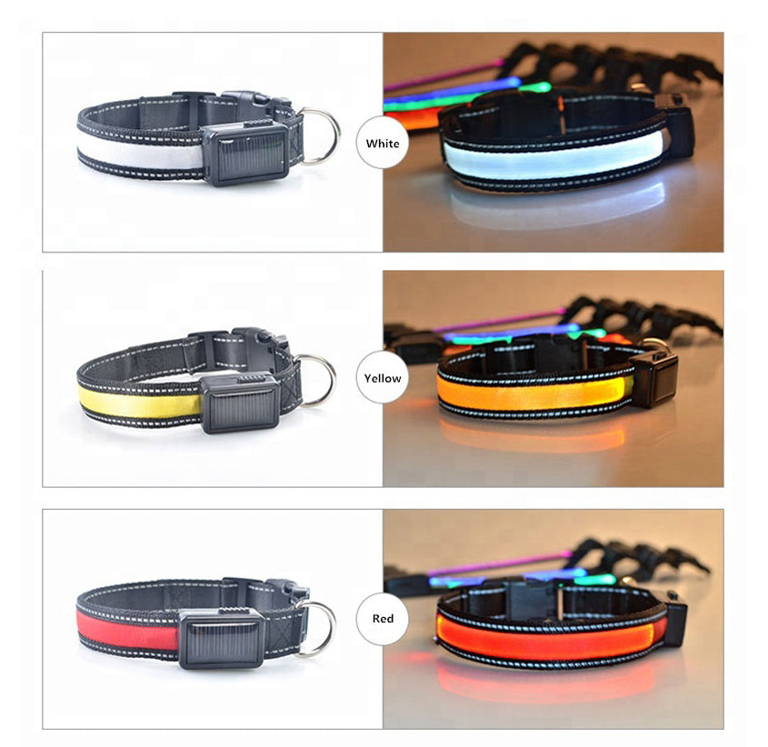 USB and Solar Charge Reflective Led Dog Collar