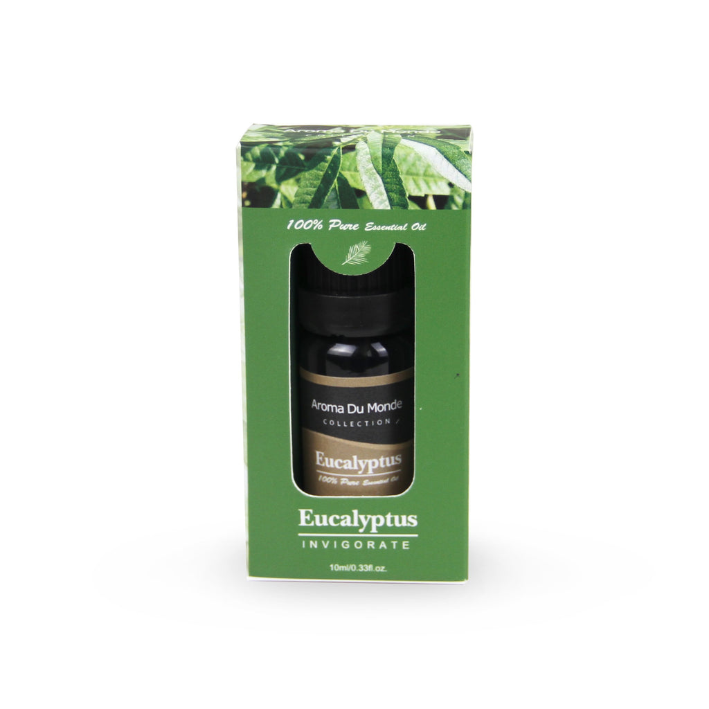 Eucalyptus Fragrance Oil - Premium Grade Scented Oil - 10ml