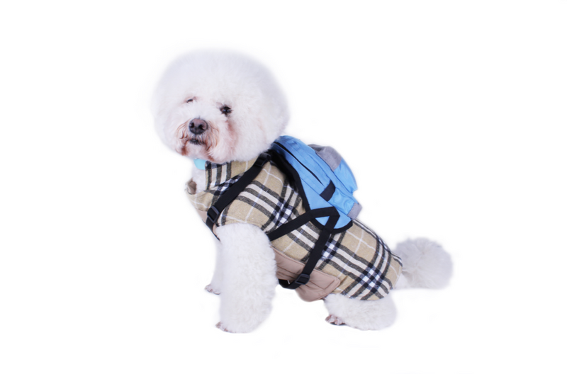 High Quality Dog Backpack Harness with leash