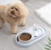 Stainless Steel Pet Bowls with Automatic Water Bottle