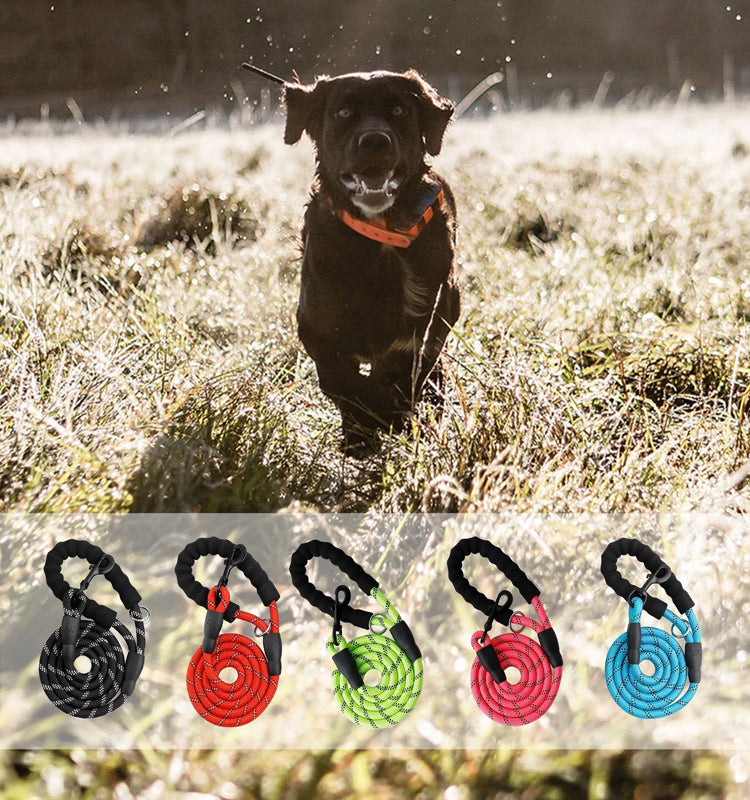 5 FT Leash With Comfortable Padded Handle and Reflective Threads