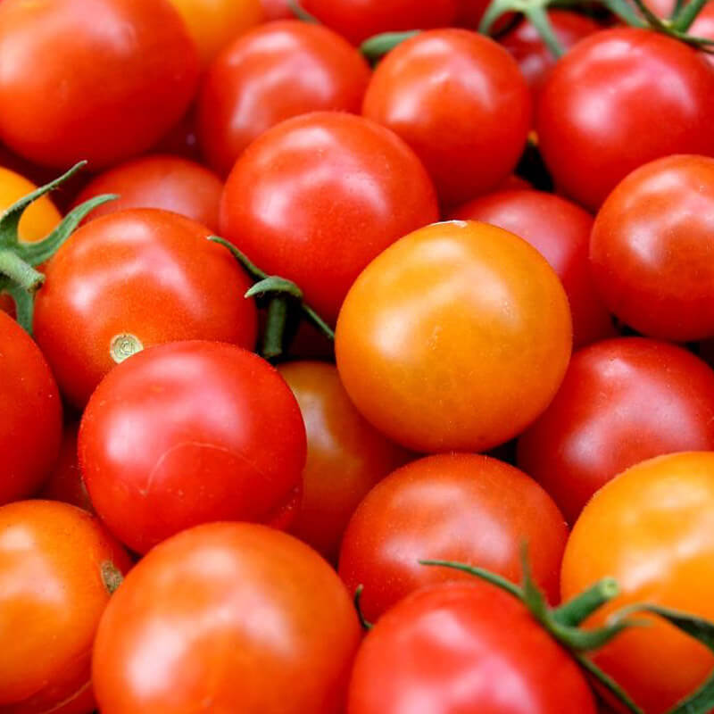 Cherry Tomatoes Seeds - Organic - Beyond Bricks