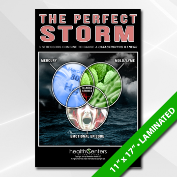 Perfect Storm (Gen. Prac.) Poster
