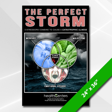 Perfect Storm (Gen. Prac.)  Poster Large