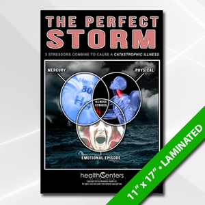Perfect Storm (Chiropractor) Poster