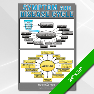 Symptom and Disease Cycle Poster Large
